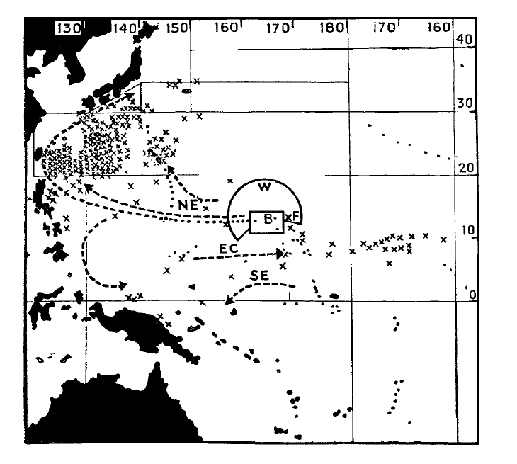 A map of radioactive fish collected after the Castle Bravo test. Arrows show major water currents.