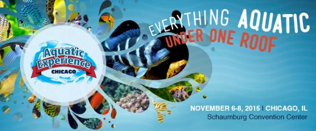 aquatic experience logo - reefs