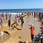 Massachusetts Beachgoers Attempt to Rescue Great White Shark