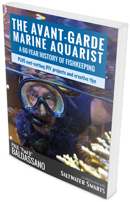 "Paul ""Paul B"" Baldassano Pens Unique Book on Marine ..."
