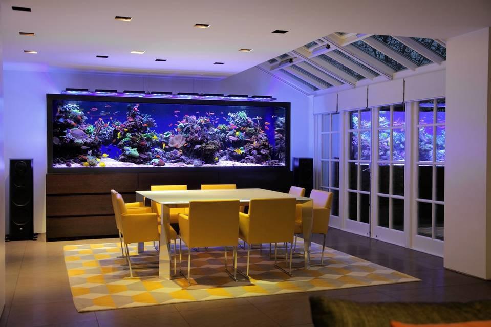 Photo Credit- Aquarium Architecture