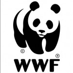 WWF Reports on the Status of Our Oceans