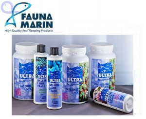 fauna marin products - reefs
