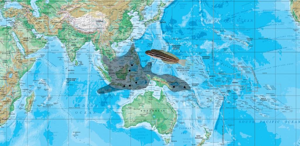 abditus map