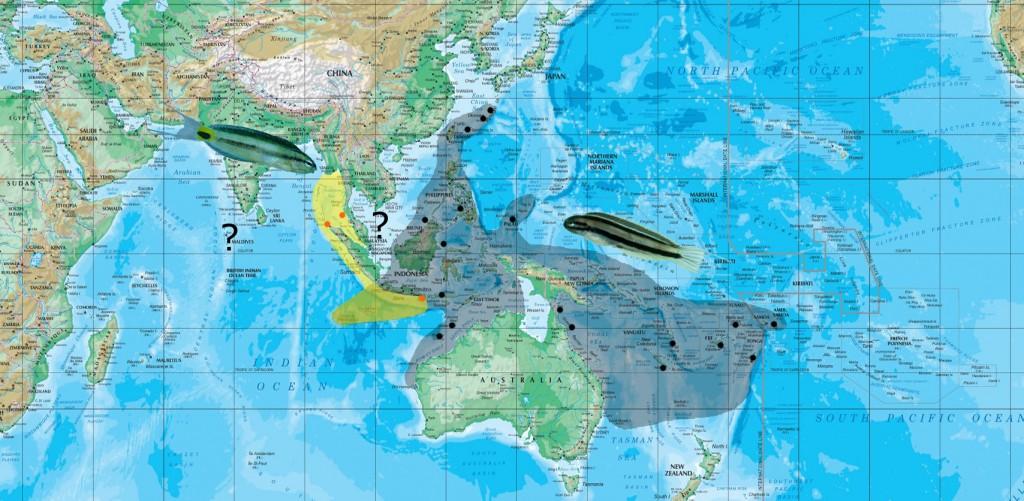 ditrema map