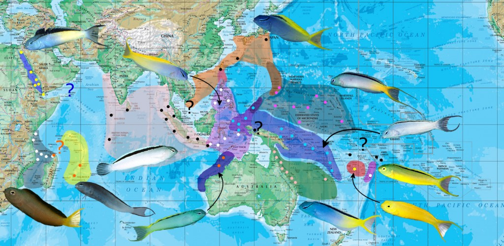 mossambicus map