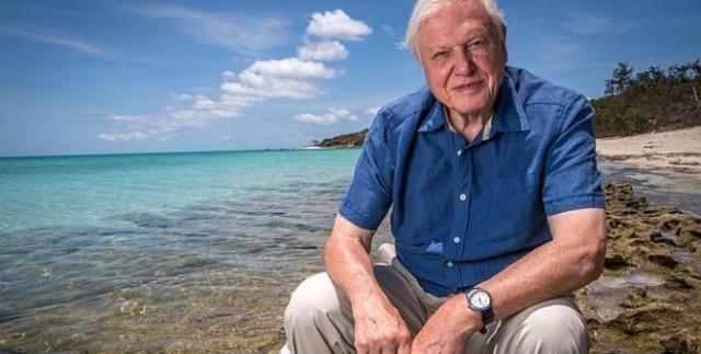 Sir David Attenborough in situ. Credit: Atlantic Productions