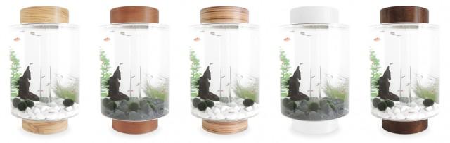Norrom Aquarium - reefs