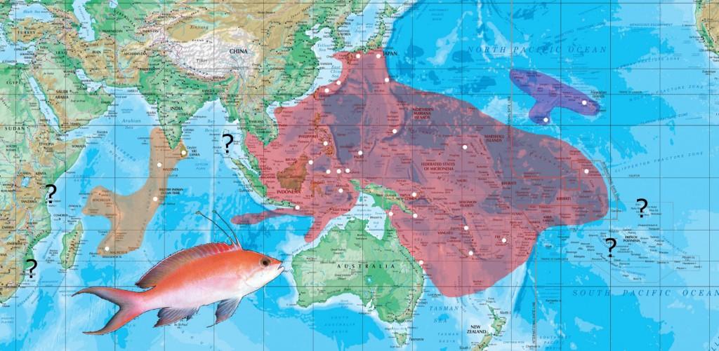 bicolor map
