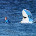 What are the Odds of Being Attacked by a Shark?