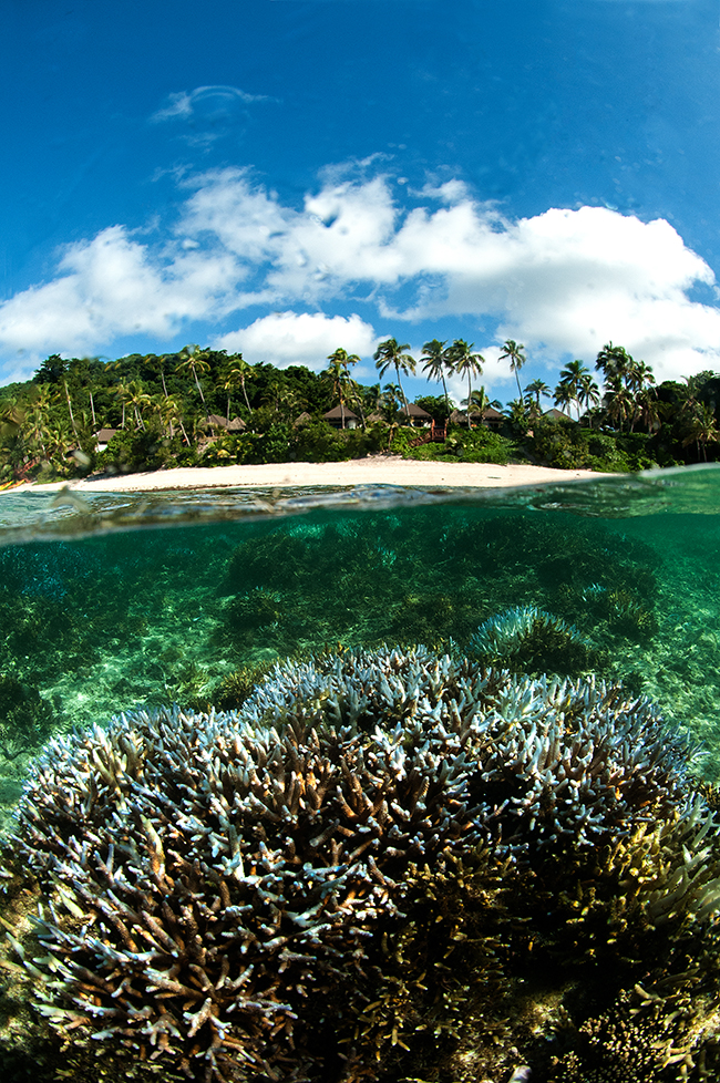 reefs close to the shore help protect coastal communities and tourist developments, but are the most at threat from human activity.