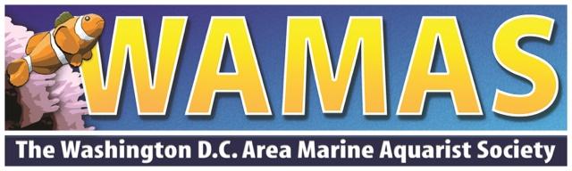 WAMAS Logo - reefs