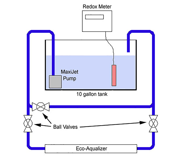 A diagram of the Eco-Aqualizer experiment done by Inland Reef Aquaria. Photo by Inland Reef Aquaria.