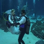 Georgia Aquarium's Underwater Wedding