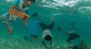 magazine-fall-2013-collecting-saltwater-aquarium-hobby-jurgen-and-stella-freund