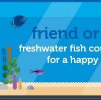 Image Freshwater-friend-foe.jpg