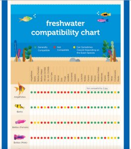Freshwater Fish Compatibility Guide Reefs