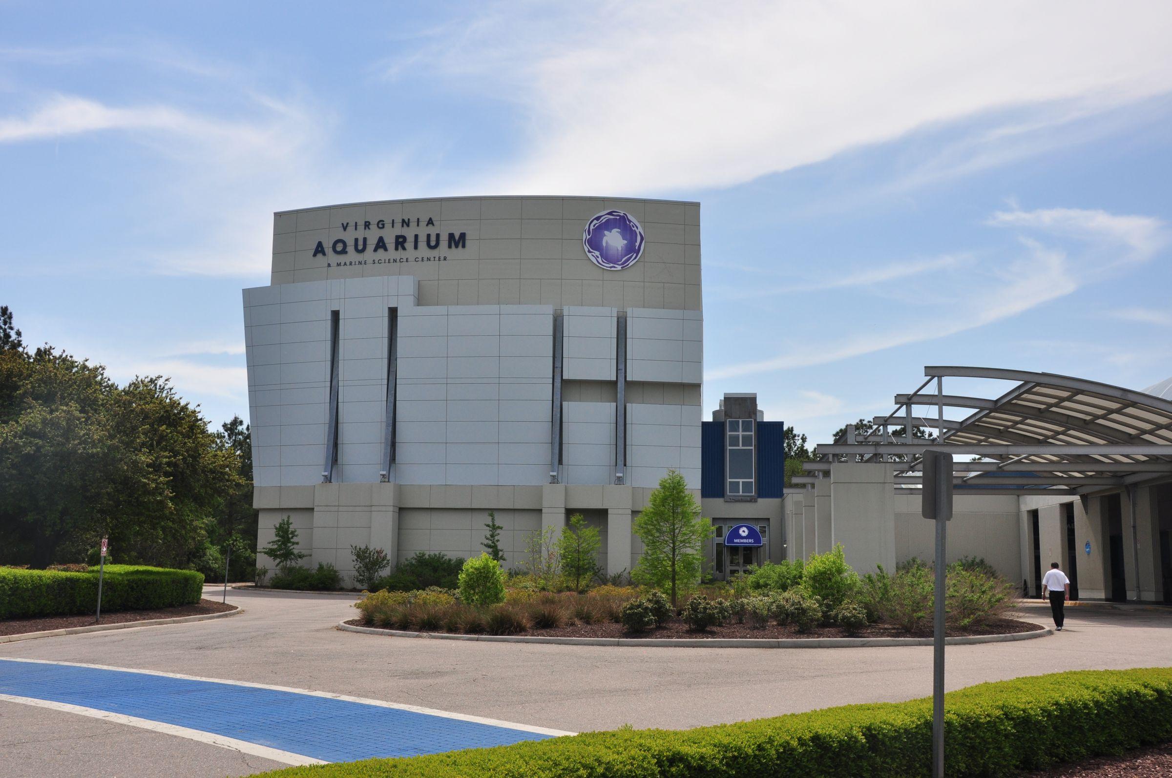 Virginia_Aquarium__Marine_Science_Center_4633704