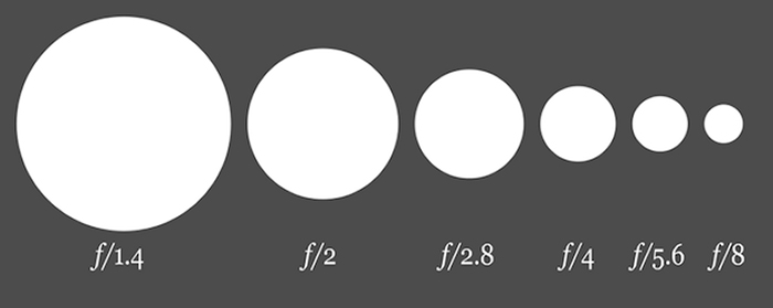 F-stops and their aperture sizes. The smaller the f-stop, the larger the opening, and thus more light enters. Photo by Wikipedia.