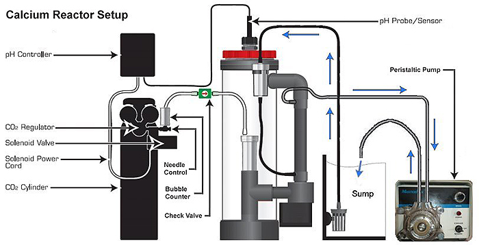 This schematic shows how I recommend you set up your calcium reactor.
