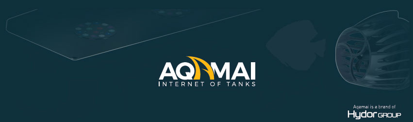 Aqamai-Teaser