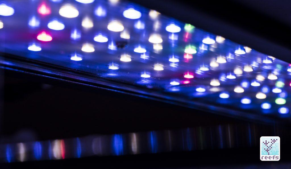 NemoLight LED Cluster