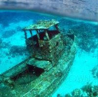 Tugboat aritficial reef divesite.   Saba divesite, Curacao, Netherlands Antilles. Unaltered/Uncontrolled Digital Photo (vertical) N/A