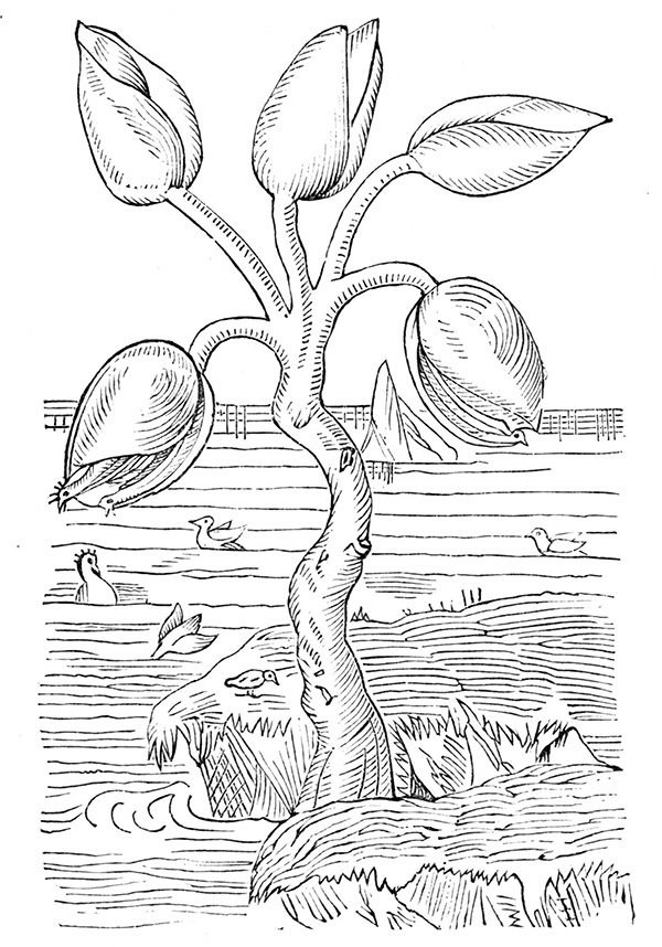 By Unknown - Popular Science Monthly Volume 4, Public Domain, https://commons.wikimedia.org/w/index.php?curid=10755434