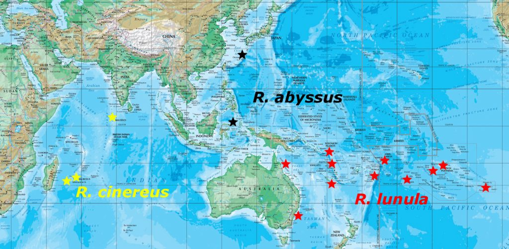 abyssus map