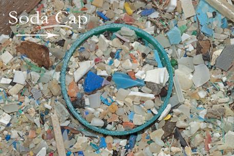 Micro-Plastic - reefs