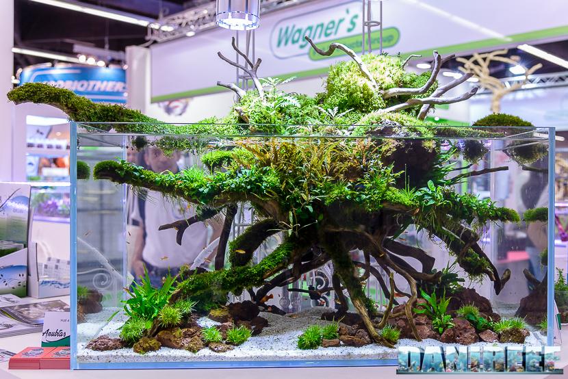 2016_05 Interzoo Norimberga Anubias Aquascaping 02