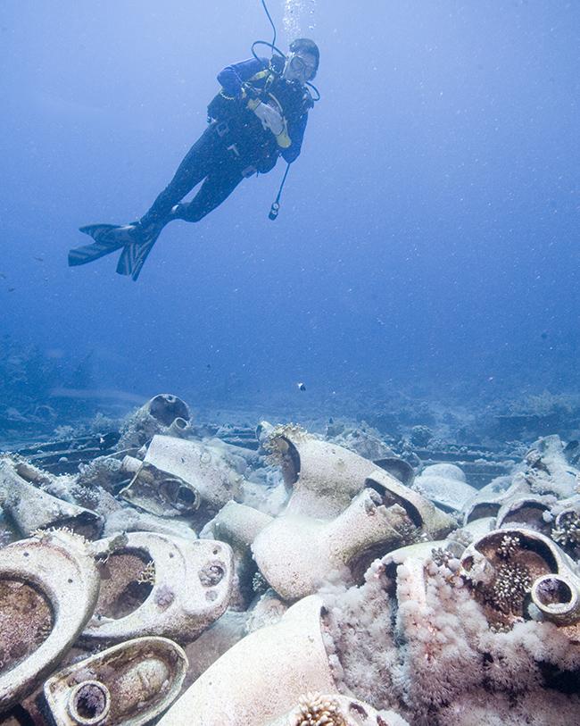diver by loos - yolanda reef