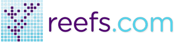 Reefs.com