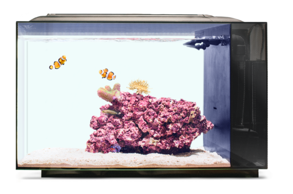 biota-aquarium-tank-reefs