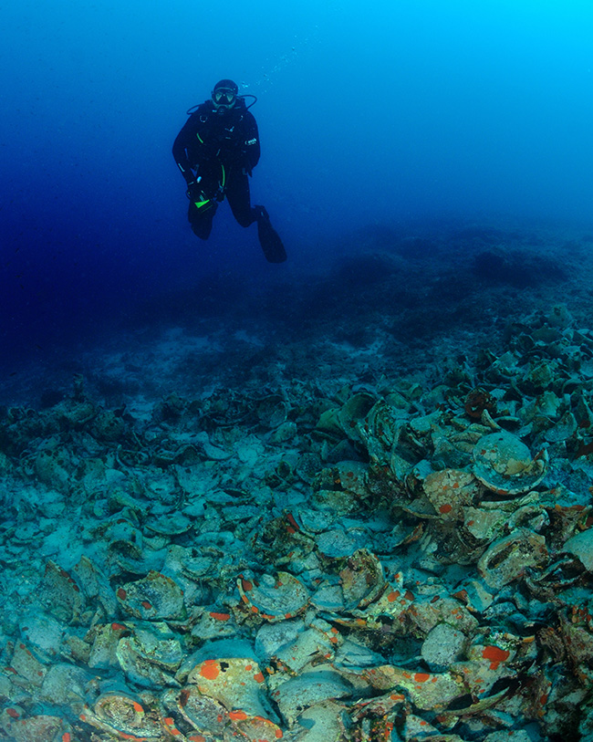 This broken mass of amphorae marks an ancient wreck in Croatia. It is in effect a rubble zone and was full of life