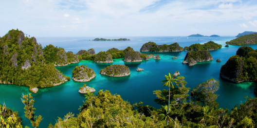 raja-ampat-reefs