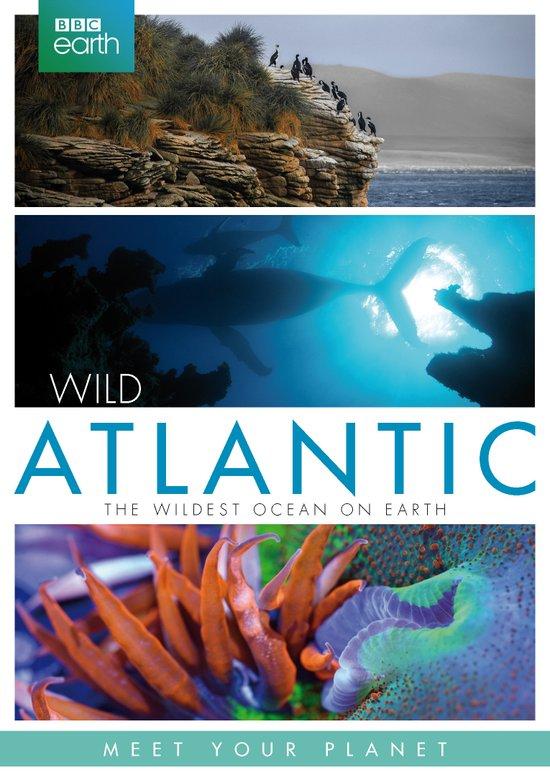 bbc-2-atlantic-logo-reefs