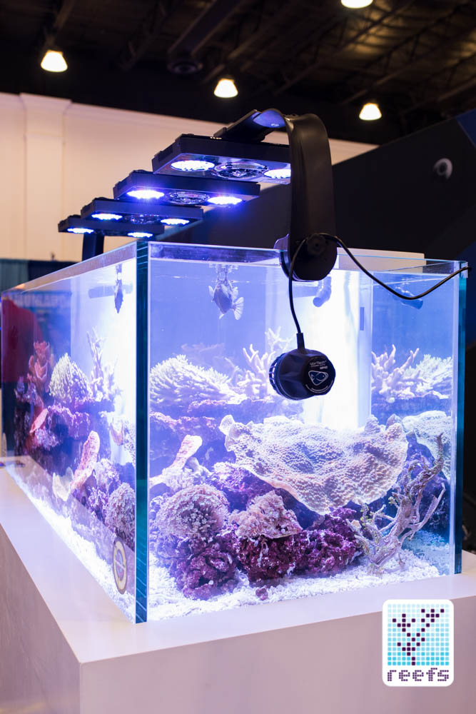 Ecotech Marine display tank, showing their latest Radion G4 light