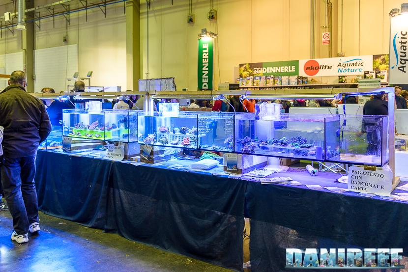 201610-geo-marine-petsfestival-253-copyright-by-danireef