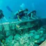 Shipwrecks: Examples of Coral Colonization on 'Artificial Reefs'