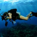 Underwater Photography & Videography