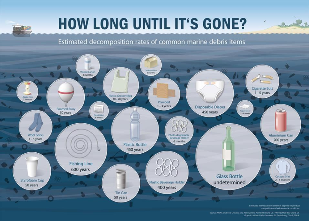 plastic decomposition rates