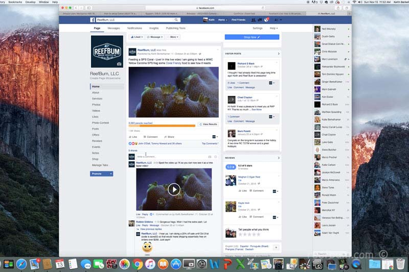 facebook live tutorial