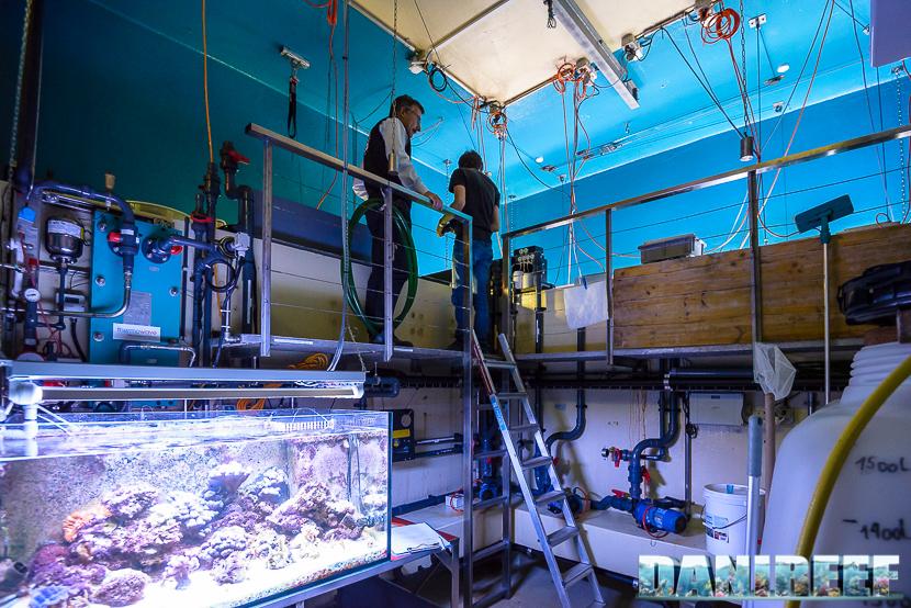 zurich zoo aquarium