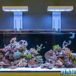 How to Reduce Aquarium Power Consumption