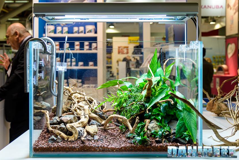 aquascape tank