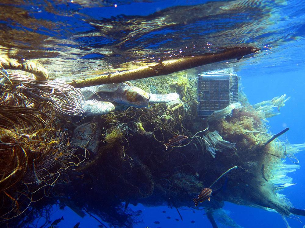 ocean waste fishing gear turtle