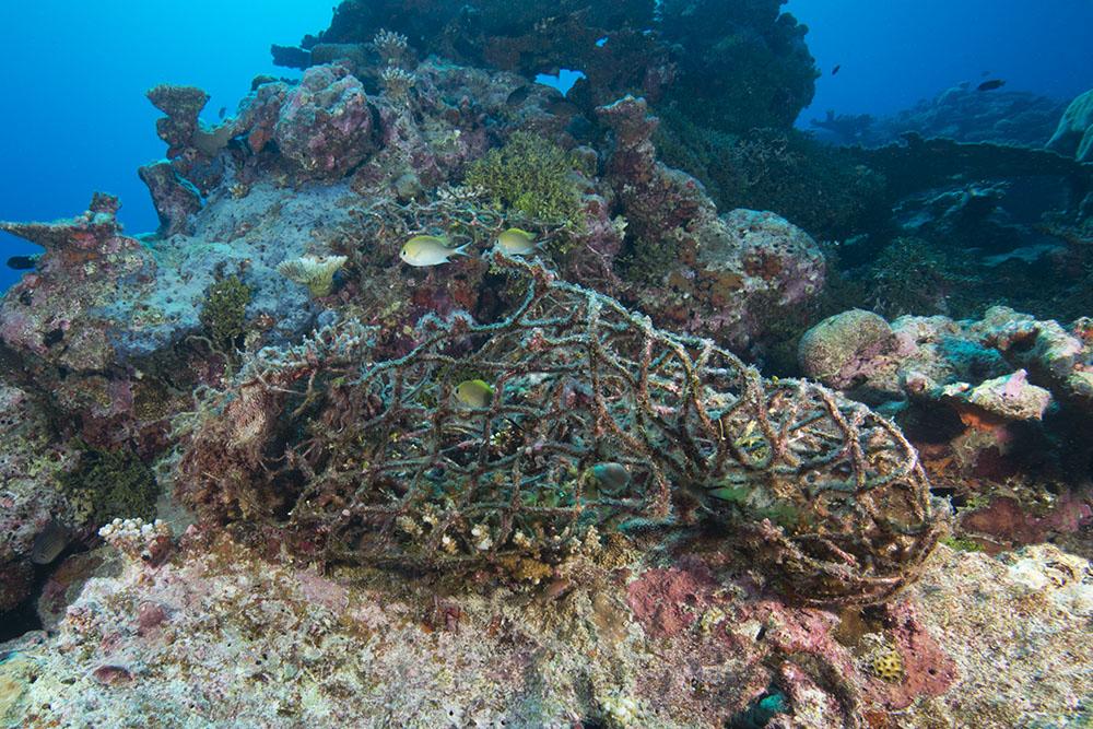 ocean waste fishing gear