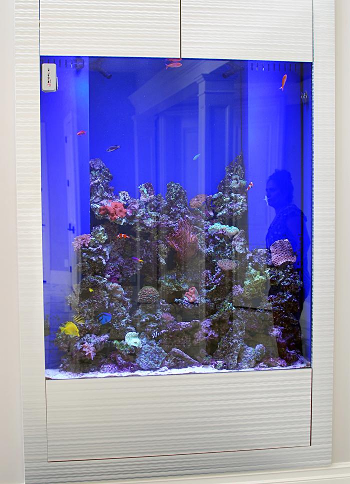 tall reef