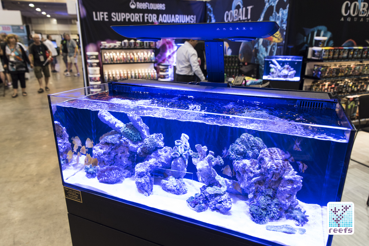 Cobalt Aquatics C-Ray LED